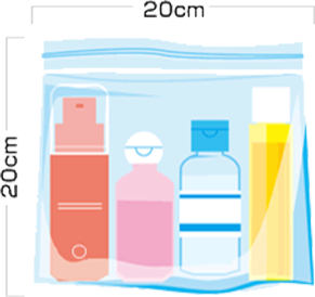 Restriction On Carry On Liquids For International Flights